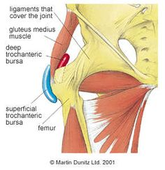 Trochanteric bursa of the hip